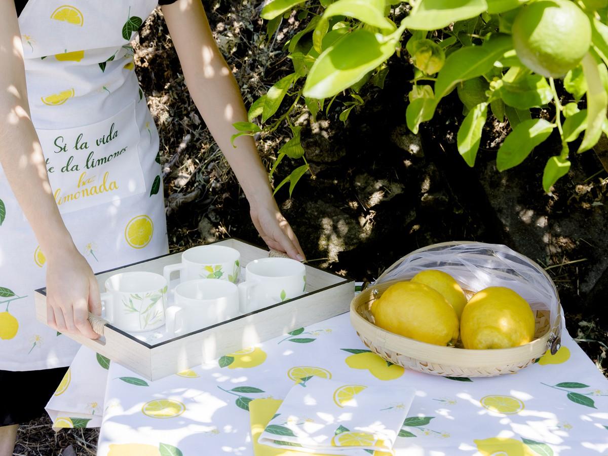 Colección de textil de cocina Lemon
